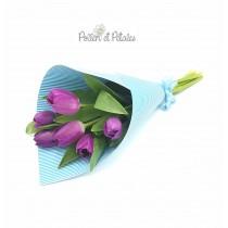 Pollen et Petales, Blue Sky Tulip