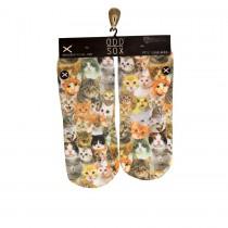 Odd Sox Cats Footies Socks